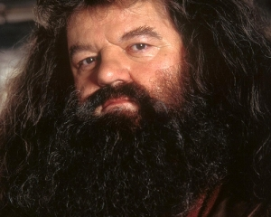 What is the teleological importance of Hagrid's beard vis a vis the function of the Good in wizarding world?